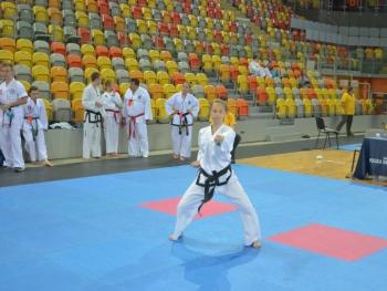 Otwarte Mistrzostwa Europy w Taekwondo, 24-25.06.2017, Częstochowa, dzień 2